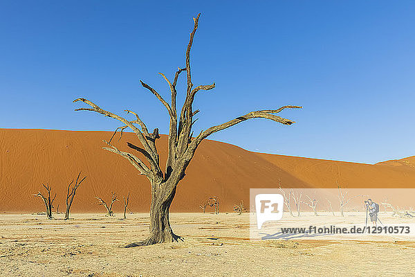 Africa,  Namibia,  Namib desert,  Naukluft National Park