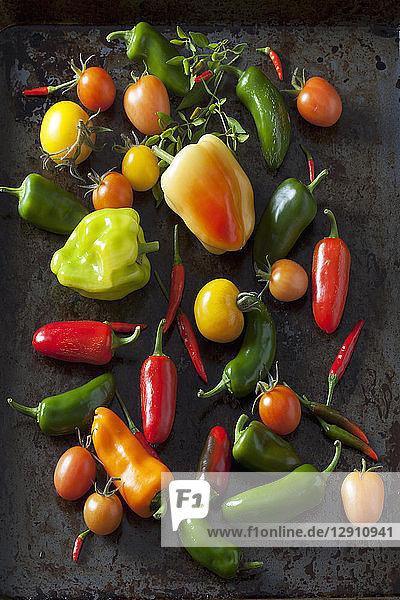 Various organic vegetables on dark ground