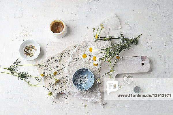 Chamomile flowers  globules  tea and salve made of chamomile