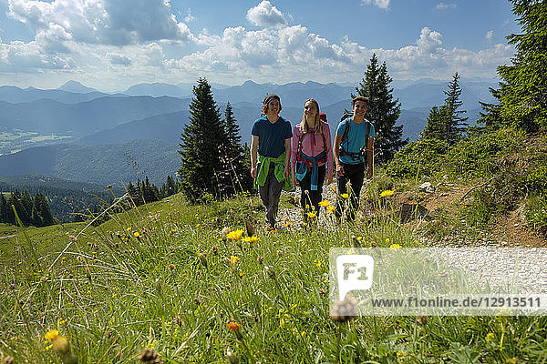 Germany  Bavaria  Brauneck near Lenggries  young friends hiking in alpine landscape