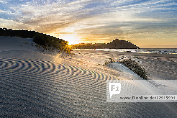 New Zealand  South Island  Puponga  Wharariki Beach  dunes at sunset