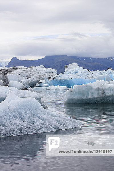 Jokulsarlon Glacier Lagoon in Southeastern Iceland is one of the country's most iconic travel destinations. The lagoon sits at the head of the Breidamerkurjokull Glacier and continues to increase in size as the glacier melts. The lake  the deepest in Iceland  has increased four times in size since the 1970s. Famous for its arctic-like scenery  the lagoon has appeared in a number of films including two James Bond movies (A View to a Kill and Die Another Day) and Batman Begins.