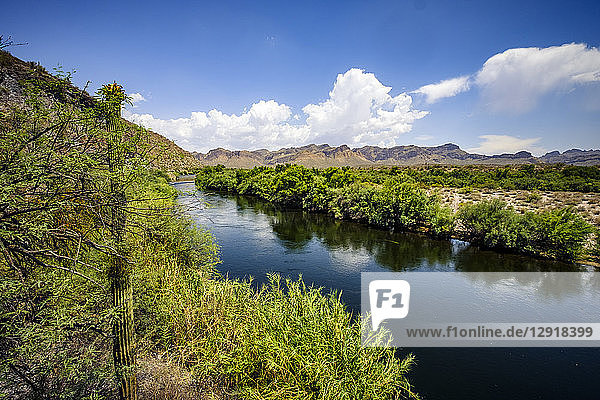 Natural scenery of Salt River,  Phoenix,  Arizona,  USA