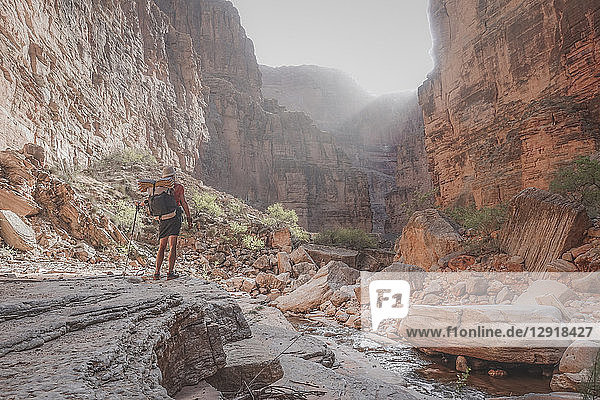 Rear view shot of female hiker standing in Grand Canyon  Arizona  USA