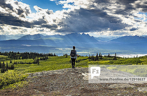 Female hiker at Curry Ridge Trail looking at view of Alaska Range  Denali National Park  Alaska  USA
