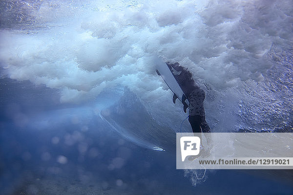 Underwater view of male surfer swimming in ocean  Male  Maldives