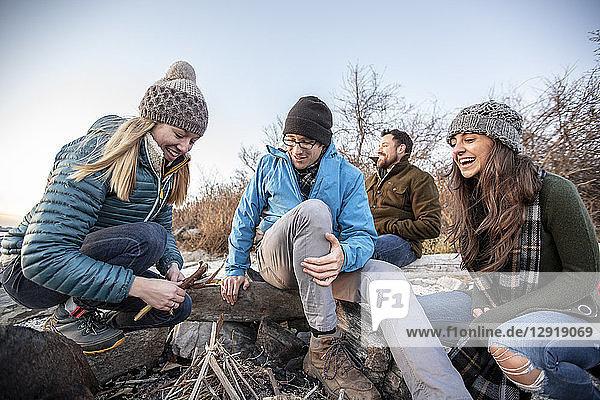 Four adult friends preparing campfire on coastal beach in autumn  Portland  Maine  USA