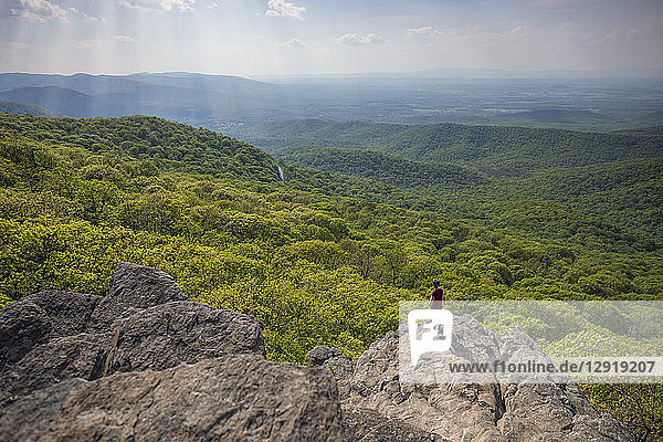 Male hiker standing at edge of Humpback Rock with sunlight illuminating green forest in background  Virginia  USA