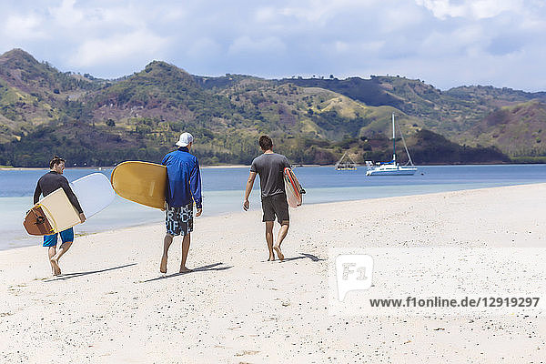 Rear view of three male surfers walking on beach