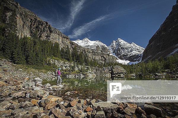 Hiker standing on shore of Lake O'Hara  Yoho National Park  Alberta  Canada