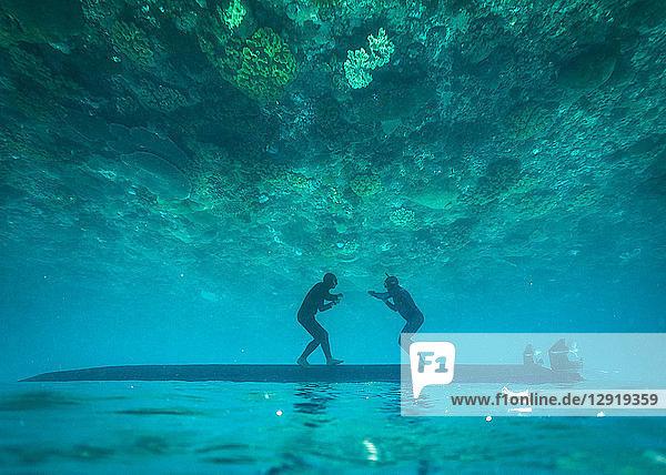 Two freedivers having fun underwater  Nusapenida  Bali  Indonesia