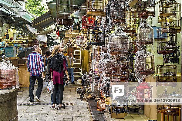 Yuen Po Street Bird Garden market  Mongkok  Kowloon  Hong Kong  China  Asia