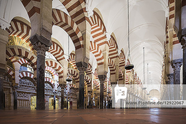 Interior of The Great Mosque (Cathedral of Our Lady of the Assumption) (Mezquita) of Cordoba  UNESCO World Heritage Site  Cordoba  Andalucia  Spain  Europe