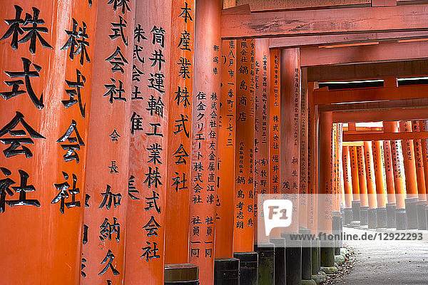 Prayers written in Japanese on the red wooden Torii Gates at Fushimi Inari Shrine  Kyoto  Japan  Asia