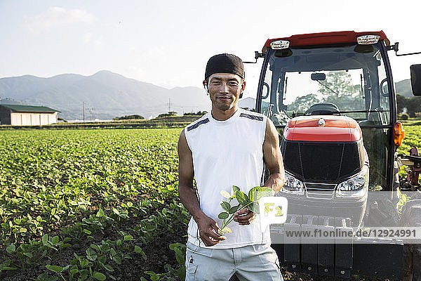 Japanese farmer standing in front of red tractor in a soy bean field  looking at camera.