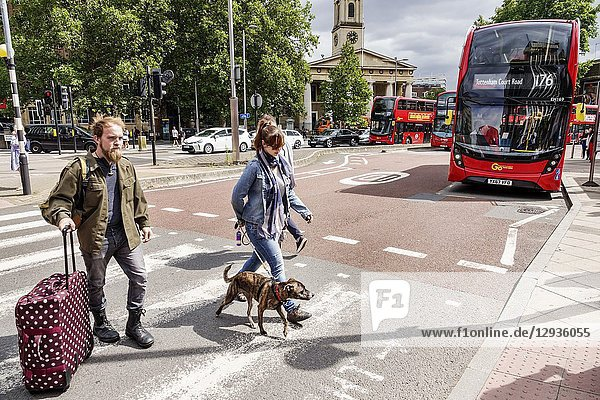 United Kingdom Great Britain England  London  South Bank  street crossing  marked pavement  pedestrian pedestrians  man  woman  dog  pet  rolling luggage  double decker bus