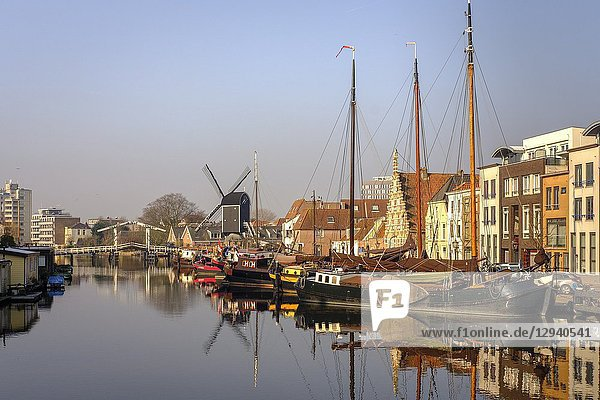 Netherlands Leiden- -view of the old town with the Molen De Valk-windmill with a working waterwheel and 1900s-style living spaces.