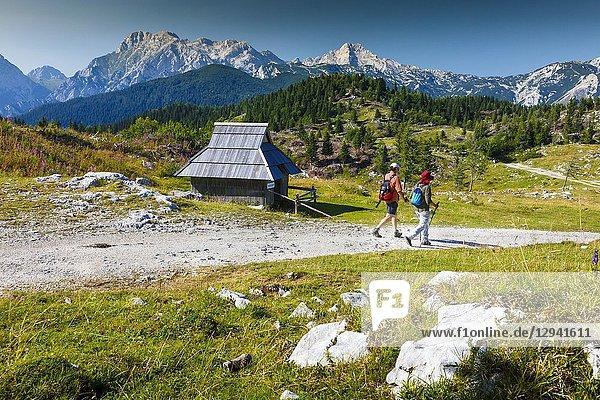Mountains in summer  tourists and huts. Velika Planina sky area. Upper Carniola region. Slovenia  Europe.