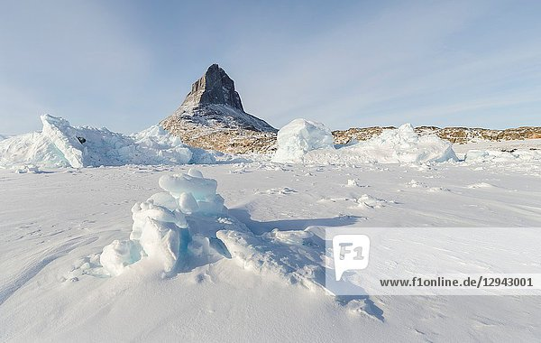 Icebergs frozen into the sea ice of the Uummannaq Fjordsystem during winter in the northwest of greenland north of the polar circle near Ikerasak. Denmark  North America  Greenland.