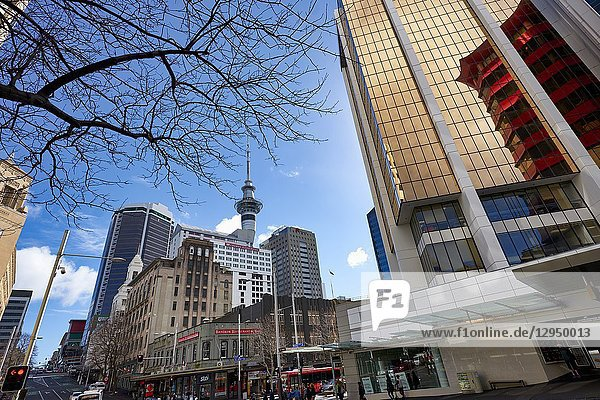 Auckland New Zealand. The modern buildings downtown and the Sky Tower.