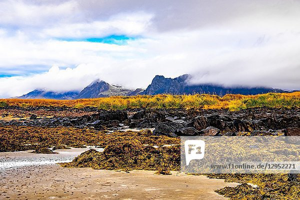 Nature of Snaefellsnes peninsula  Iceland.