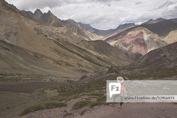 Rainbow of colors in the Zanskar mountains  Dundunchen La Pass  Ladakh  India.