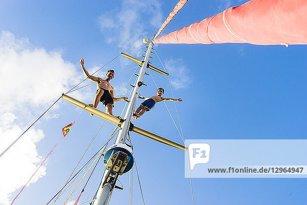 A father and his son on a mast of a sailing boat with a blue sky  Hog Island  Grenada  Lesser Antilles  West Indies A father and his son on a mast of a sailing boat with a blue sky, Hog Island, Grenada, Lesser Antilles, West Indies