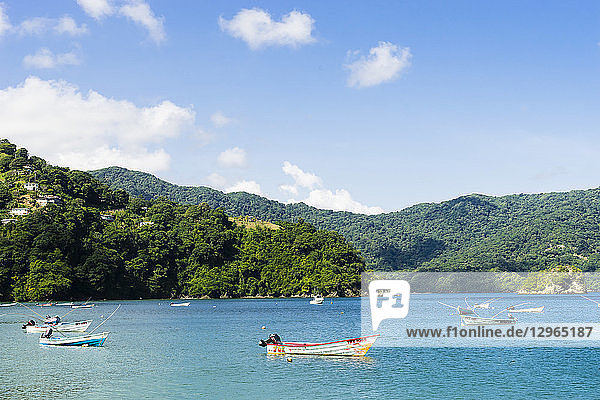View on Charlotteville's bay and the beach  Charlotteville  Tobago  Trinidad and Tobago  West Indies  South America