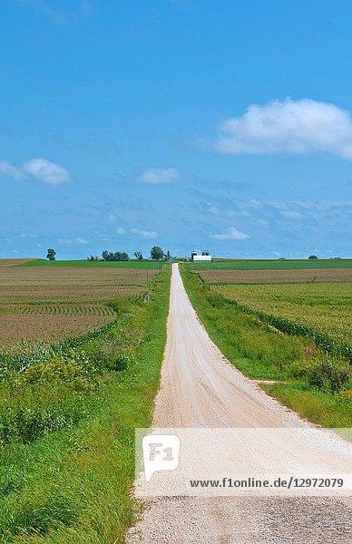 Long road to perfect farm in Iowa near Dyersville