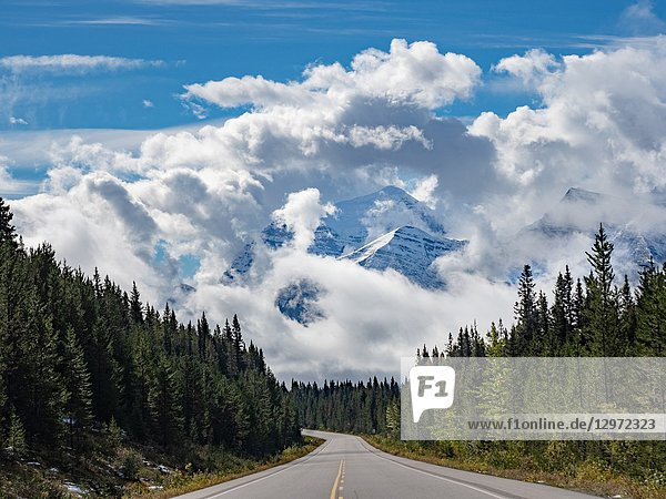 Canadian Rockies. Icefields Parkway.