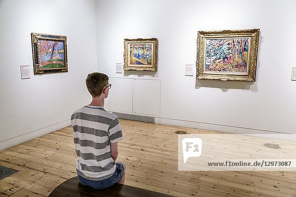 United Kingdom Great Britain England  London  Covent Garden Strand  Somerset House  Courthauld Gallery  inside interior  art museum  collection  painting  Fauve  Fauvism  Maurice de Vlaminck  teen  boy  sitting  looking  striped t-shirt