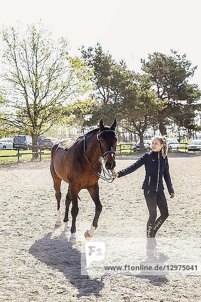Teenage girl leading a horse in Sweden