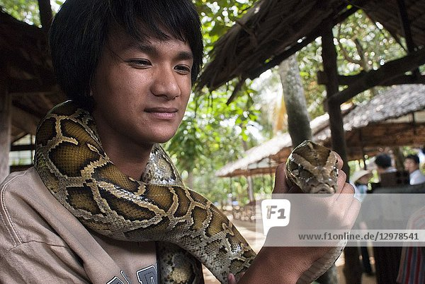 A tourist takes pictures with a boa snake in Turtle Island (Con Qui). Mekong Delta  Vietnam.