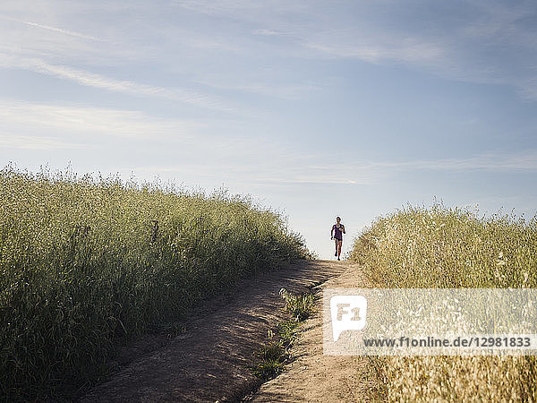 Woman jogging on path through field