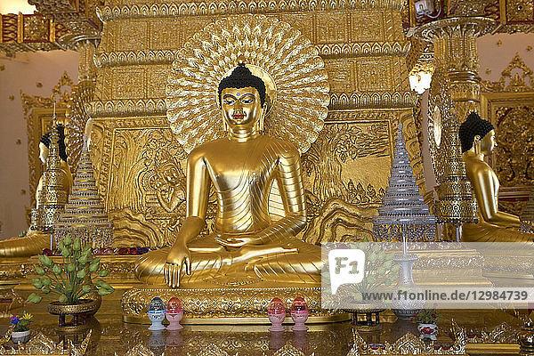 Thailand  Ubon Ratchathani  Wat Phra That Nong Bua  Shrine  Buddha statue