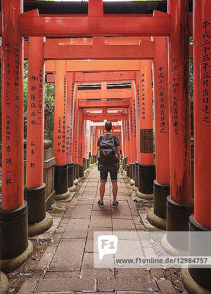Japan  Kyoto  Fushimi Inari-Taisha temple  Torii Gate  Tourist with backpack
