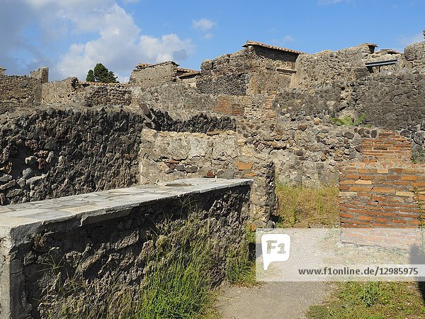 Ruins of Pompeii  Naples Province  Italy.