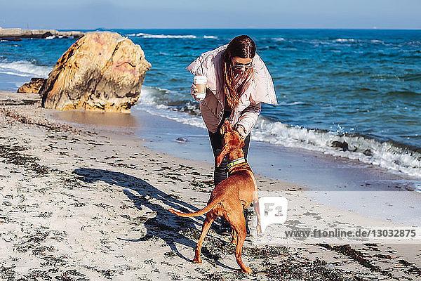 Mittlere erwachsene Frau am Strand  die ihren Hund streichelt  Odessa  Odeska Oblast  Ukraine
