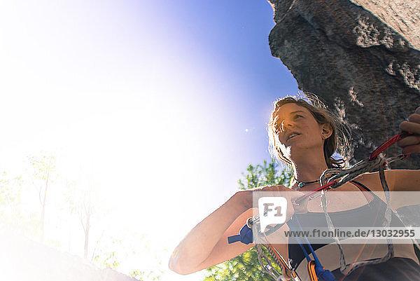 Young female rock climber preparing climbing rope  Smoke Bluffs  Squamish  British Columbia  Canada