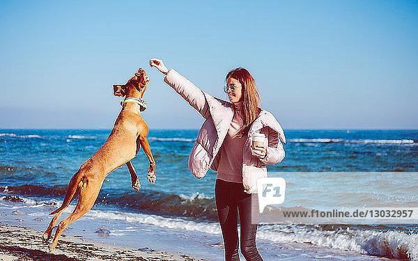 Mittlere erwachsene Frau am Strand beim Spielen mit ihrem Hund  Odessa  Odeska Oblast  Ukraine