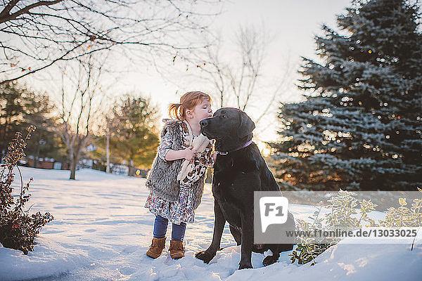 Weibliches Kleinkind mit roten Haaren spielt mit Hund im Schnee  Keene  Ontario  Kanada
