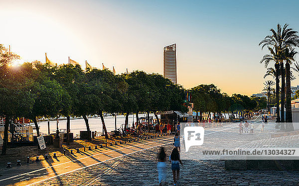 Paseo Alcalde Marques del Contadero along the Canal de Alfonso XIII at sunset  Seville  Andalusia  Spain