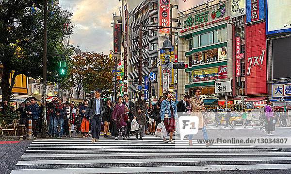 Crowds crossing the road at the Shibuya Crossing  Tokyo  Japan