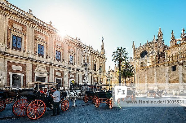 Horse-drawn carriages for hire on Plaza del Triunfo  Seville  Andalusia  Spain
