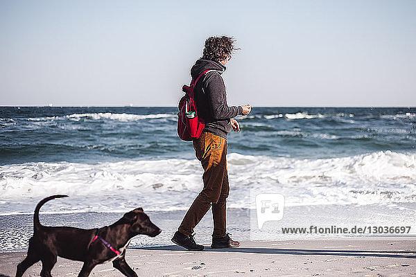 Mittelgroßer erwachsener Mann geht mit seinem Hund am Strand spazieren  Odessa  Odeska Oblast  Ukraine