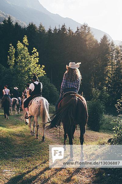 Junge erwachsene Freunde reiten durch den Wald  Rückansicht  Primaluna  Trentino-Südtirol  Italien