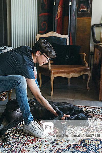 Junge streichelt Hund im Wohnzimmer