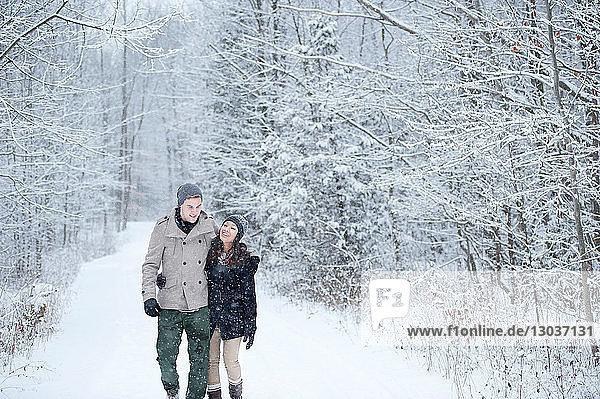 Romantisches junges Paar beim Spaziergang im verschneiten Wald  Ontario  Kanada