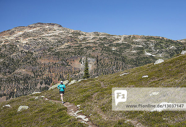 A women runs along a trail through a green alpine meadow on a hot summer day in the mountains near Pemberton  British Columbia  Canada