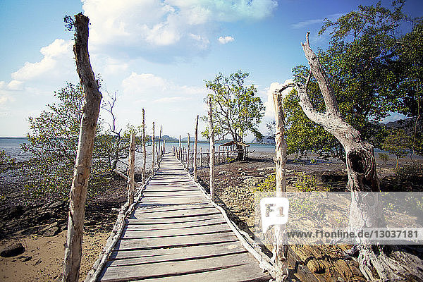 View of a wooden footbridge on lakeshore  Thailand